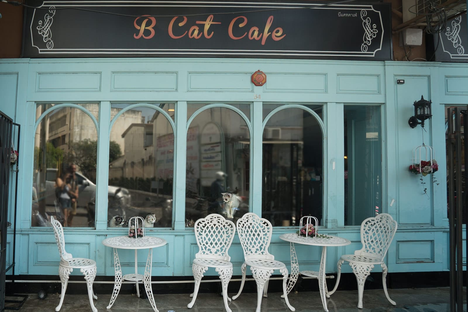 B Cat Cafe in Phuket Old Town
