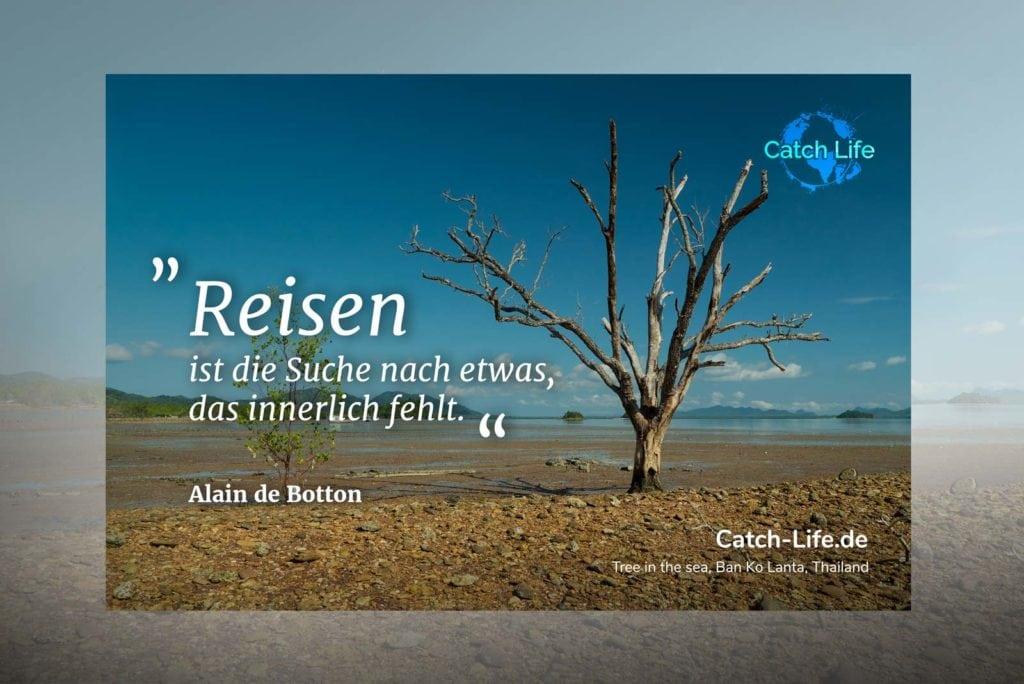 Reisen ist die Suche Tree in the Sea Koh Lanta