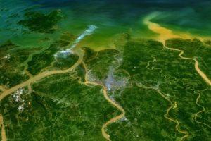 Delta Des Roten Flusses Bei Haiphong