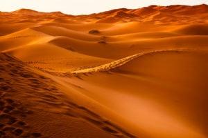 Wueste Marokko Nordafrika