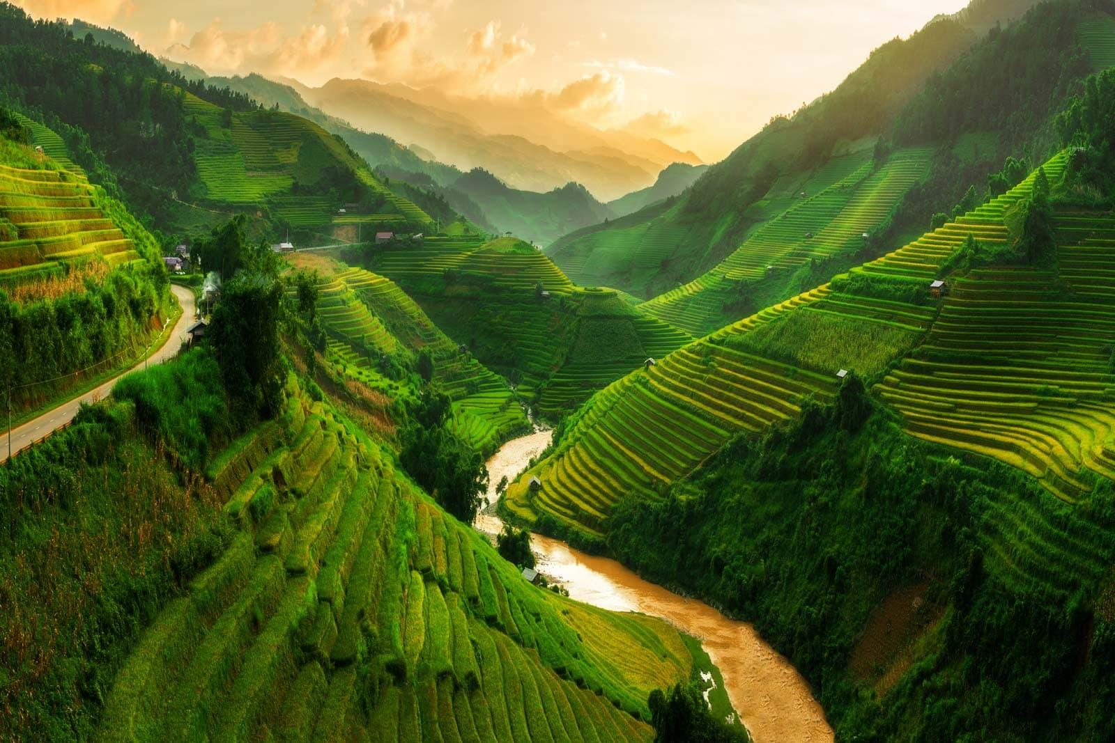 Rice Terraces Near Sapa Northern Vietnam